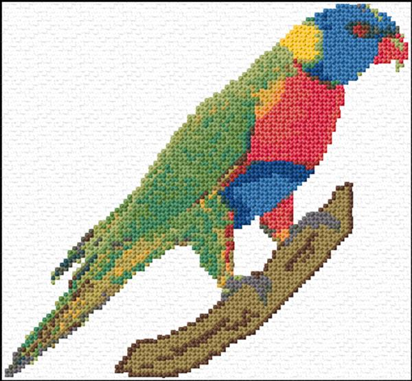 Parrot ann s cross stitch patterns