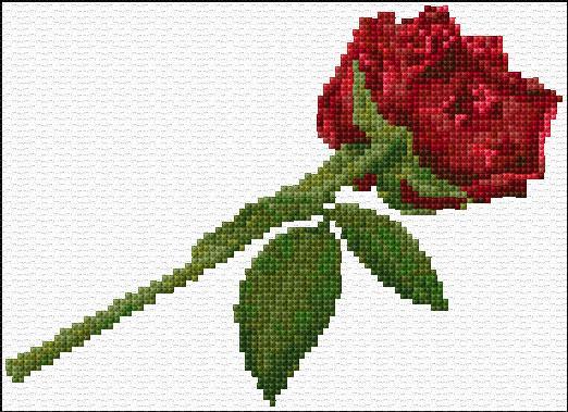 бродерия на роза