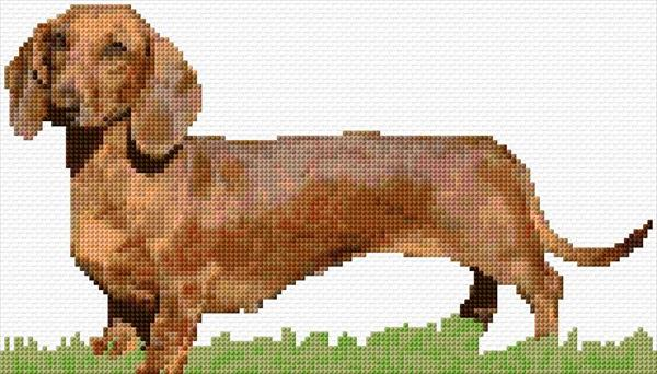 Sausage Dog - Ann\'s Cross-Stitch Patterns