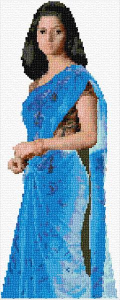 Woman in Blue Saree